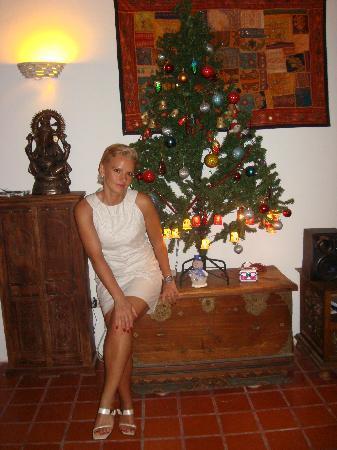 Posada Casa Rosa: новый год