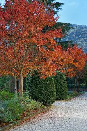 Villa di Piazzano: garden in the autumn