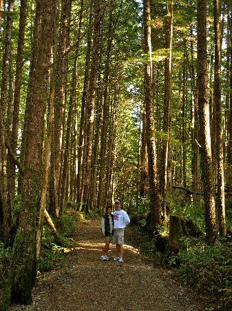 Florencia Bay Hideaway: The Wooded Trail from our Cabin to the Florencia Bay Beach