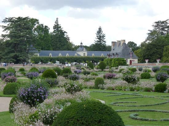 Zamek Chenonceau: Garden - close up