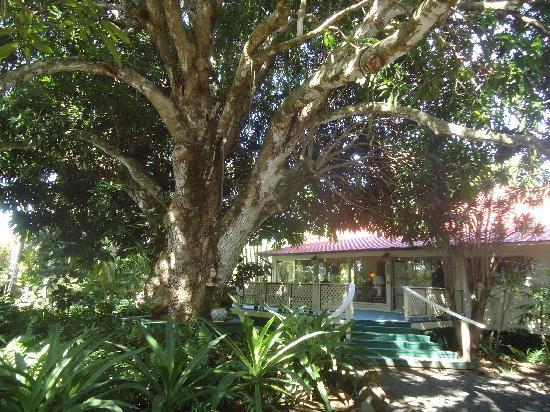 Haiku Plantation Inn: Maui Bed and Breakfast: Haiku Plantation Inn