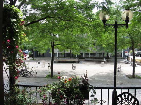 Au Jardin de Fanny : Vue d'été sur la Place Roy