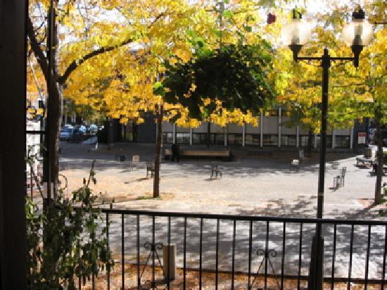 Au Jardin de Fanny : Vue d'automne sur la Place Roy