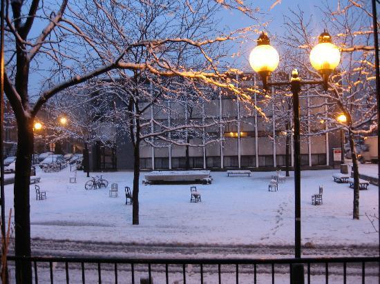 Au Jardin de Fanny : Vue d'hiver sur la Place Roy
