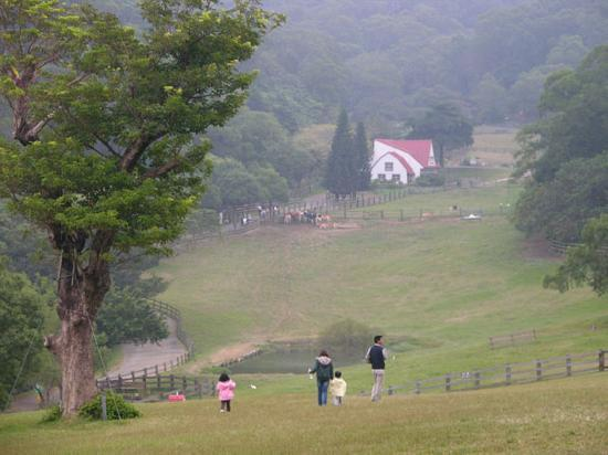 Family outing at Flying Cow Ranch, Miaoli County