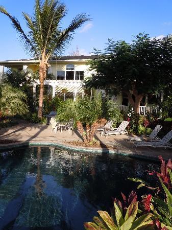 Pineapple Inn: Pineapply Inn Maui view from pool