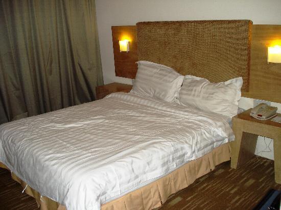 Pinnacle Hotel: standard double room