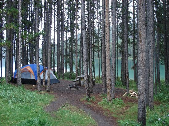 Two Jack Lakeside Camgpround : Campsite