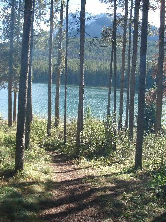 Two Jack Lakeside Camgpround : Short walk to the lake