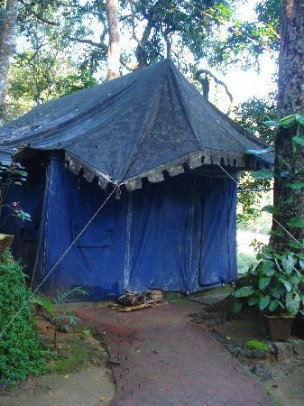 Ela Ecoland Nature Retreat: The mouldy tent