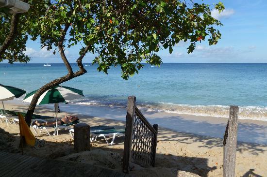 مانجو باي - أول إنكلوسف: The beach