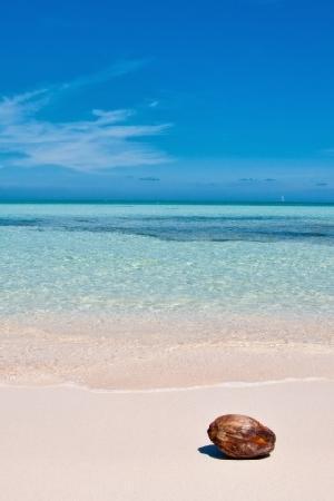 Gili Meno, Indonesia: 透き通る海