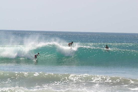 El Rey Patricio: surf