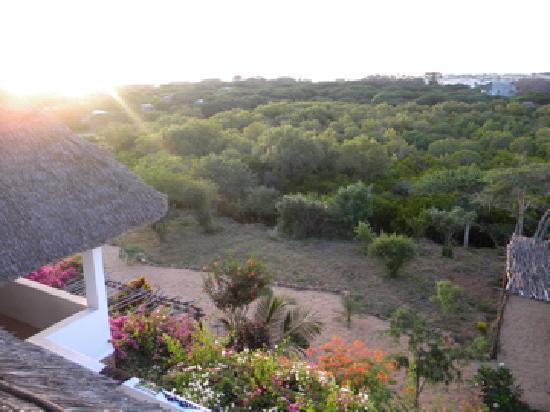 Mkoko House: vacker solnedgång från huset!