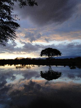 Voyager Ziwani, Tsavo West: sunset
