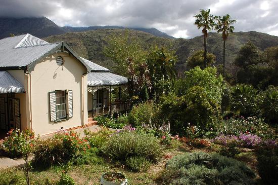 Calitzdorp, South Africa: Wunderschoene Botanik rund um das Groenfontein Retreat