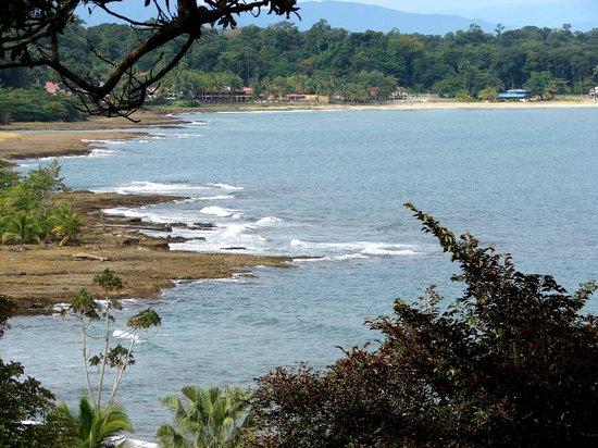 Tortuguero Wildlife Tour: Coast Line