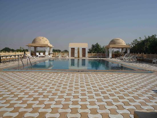 Mirvana Nature Resort and Camp: Der Pool