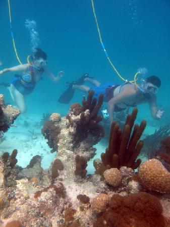 SNUBA Turks and Caicos: SNUBA TCI