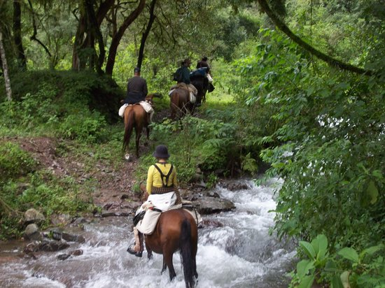 Chicoana, Argentina: GO horse riding to the MOUNTAINS