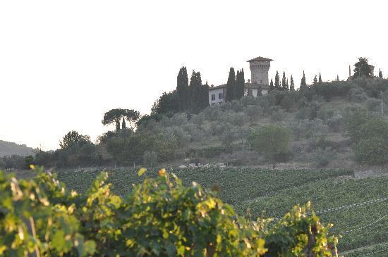 Castello Vicchiomaggio: Vicchiomaggio visto dalle vigne