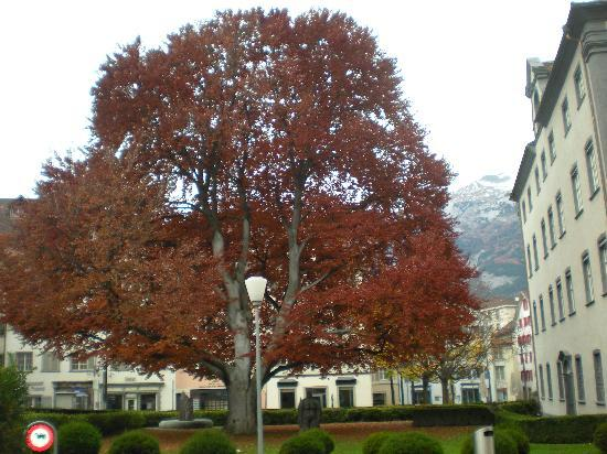 Ambiente Hotel Freieck: The square in front of the Hotel