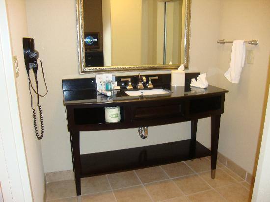 Hampton Inn & Suites Montgomery-Downtown: Vanity
