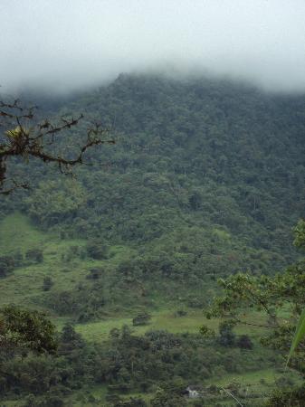 La Casa de Cecilia: Ecuador