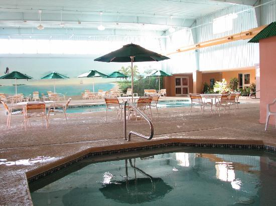 La Quinta Inn & Suites Cincinnati Sharonville: Great pool for a mid-range hotel