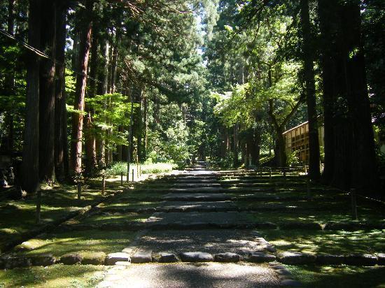 Katsuyama, Japón: 静寂美