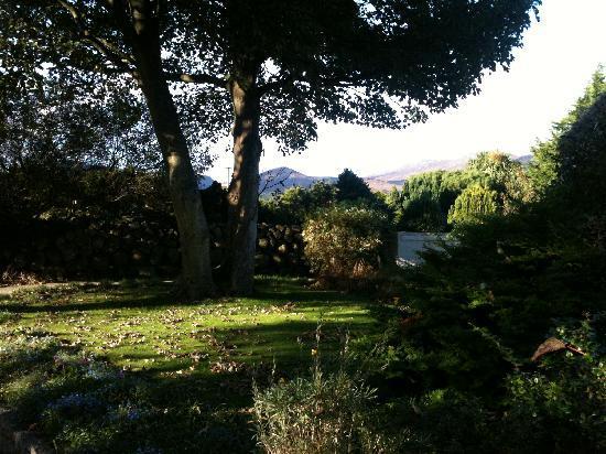 Glassdrumman Lodge: Garden