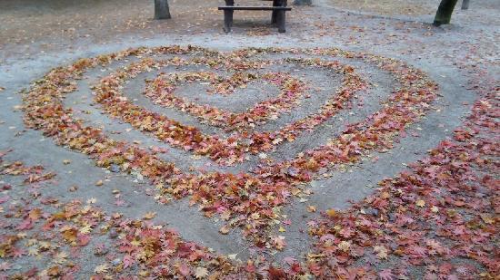 Nami Island: 枯れ葉でハートが作られてました