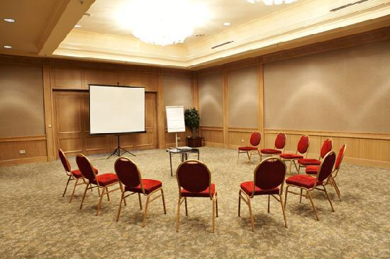 InterContinental Almaty Hotel: Abai Meeting Room
