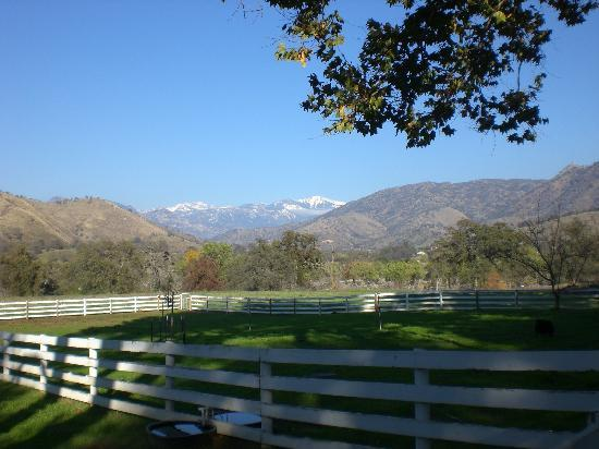 Lazy J Ranch-Americas Best Value Inn: View towards Sequoia