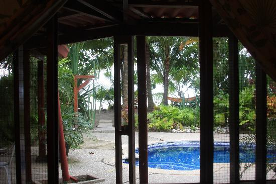 Fenix Hotel - On The Beach: The view from the kitchen