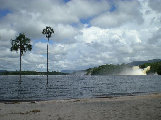 Mount Roraima: Canaima