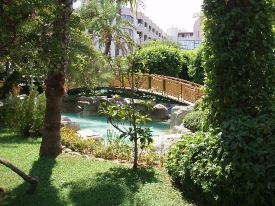 Hotel Aqua: Aqua Gardens
