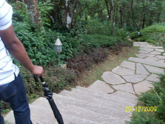Club Mahindra Madikeri, Coorg: The beautiful walkway
