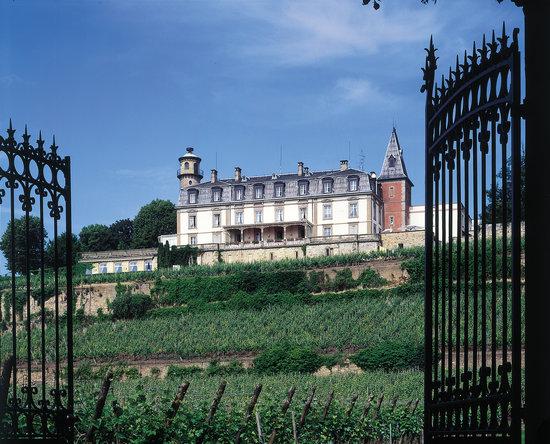 Chateau d'Isenbourg : Le Château d'Isenbourg en plein coeur du vignoble alsacien