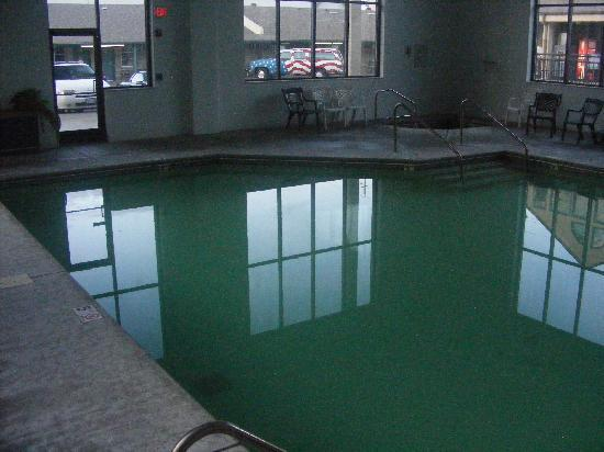 Norma Dan Motel: the indoor pool