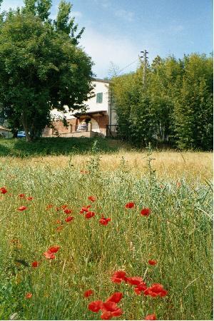 Touristic Farm Podere Chiasso Gherardo: A room