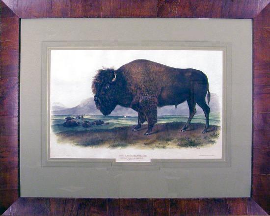 Tam O'Neill Fine Arts Gallery: Tam O'Neill Fine Arts Audubon Buffalo