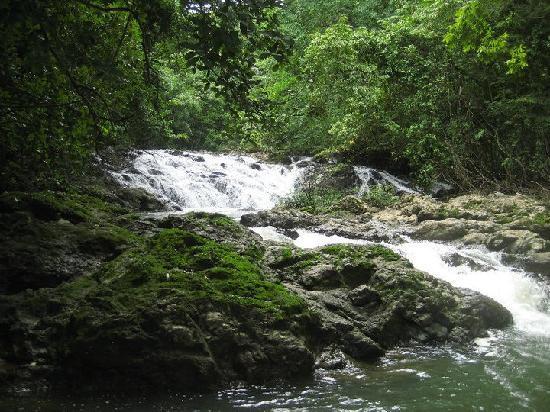 Anamaya Resort & Retreat Center: Waterfalls in the backyard