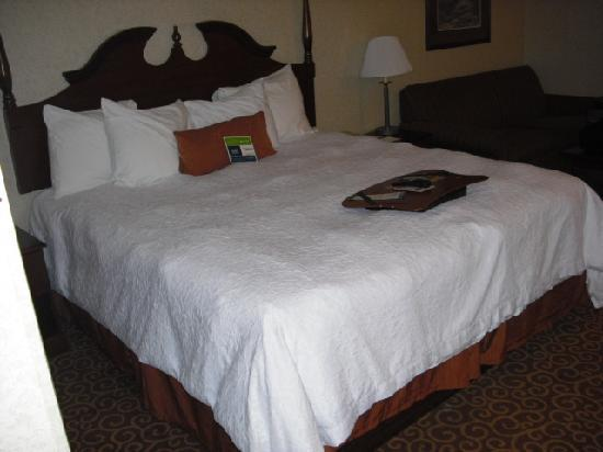 Hampton Inn Stroudsburg / Poconos: King Bed