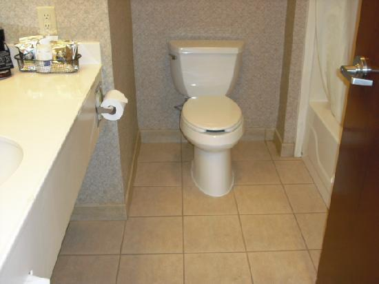 Hampton Inn Stroudsburg / Poconos: Bathroom