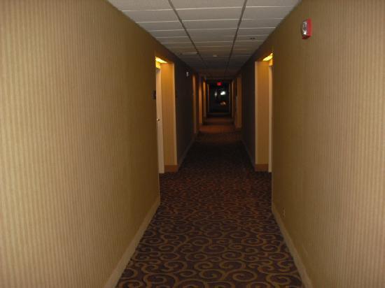 Hampton Inn Stroudsburg / Poconos: Hallway