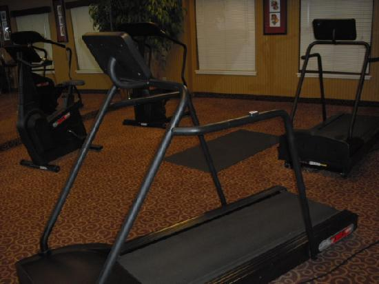 Hampton Inn Stroudsburg / Poconos: Workout area