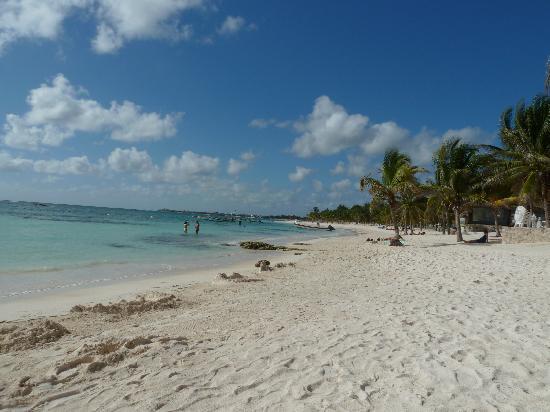 Grand Sirenis Riviera Maya Resort & Spa: Akumal Beach