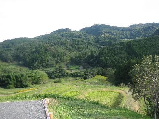 Kamogawa, Japan: 刈り取りの終わった後(2)
