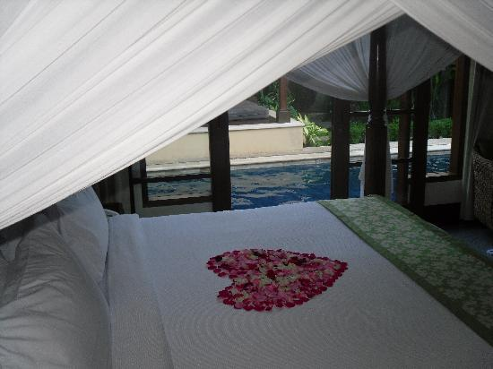 Villa Kecapi Bali: View from bed